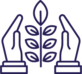 Environmentally Conscious   Hands protecting plant icon