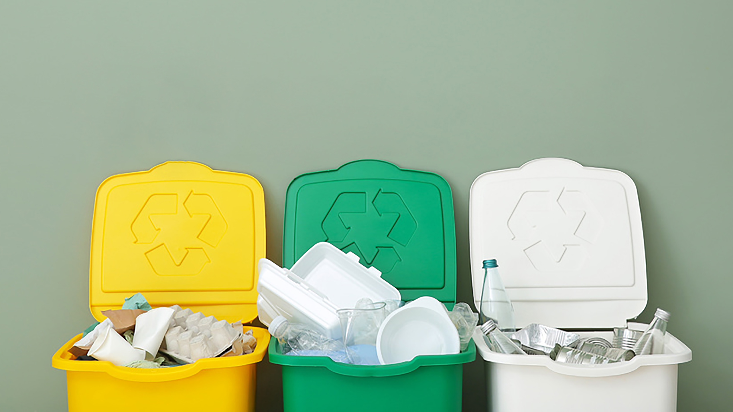 Waste Services | Waste Recycling